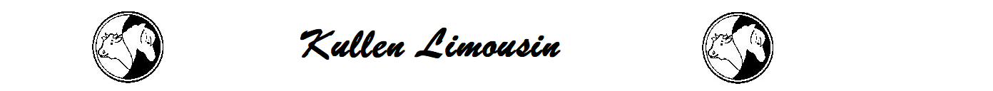 Kullen Limousin